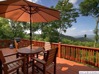 Cozy House with Wireless Internet and Washing Machine - Valle Crucis vacation rentals
