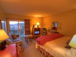 1BR Charming Inn Room at Yonahlossee Resort, Convenient Location Near Downtown - Boone vacation rentals