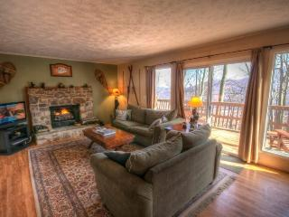 Happy Bear Chalet - Boone vacation rentals