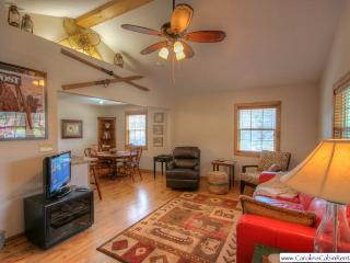 2 bedroom House with Internet Access in Blowing Rock - Blowing Rock vacation rentals