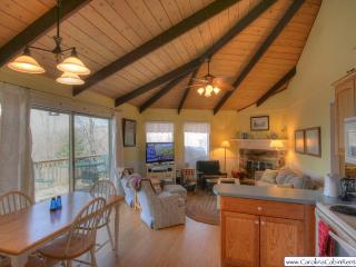 Beech Vista - Blue Ridge Mountains vacation rentals