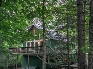 Spacious House with Internet Access and Dishwasher - Beech Mountain vacation rentals