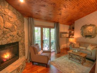 Pow Wow Cottage - Blue Ridge Mountains vacation rentals