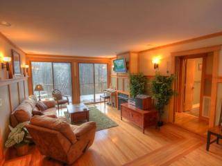 4BR Mountain Contemporary Chalet on Beech Mtn, Hot Tub, 1 Mile (3 mins) to Ski Slopes, Gas Log Fireplace, Sauna - Beech Mountain vacation rentals