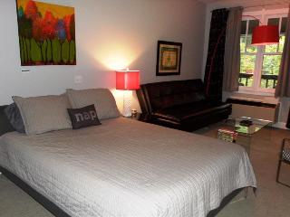 Bella Paradiso Condo 13 - Queen Studio - Eureka Springs vacation rentals
