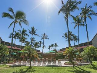 Luana Kai C103 - Ground Floor, Great Rates! - Kihei vacation rentals