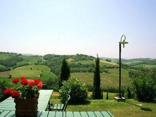 Large Tuscany Villa in the Chianti Region - Villa San Paolo - Montespertoli vacation rentals