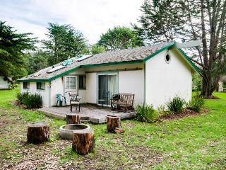 Dog friendly cabin w/park & beach access; hot tub, fireplace & pit - Fort Bragg vacation rentals