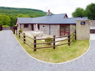 Perfect 2 bedroom House in Llanllawddog - Llanllawddog vacation rentals