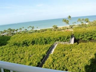 50 SEAGATE DR. NAPLES,FL#W602 W602 - Naples vacation rentals