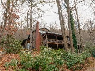 L'eagles Rest - Black Mountain vacation rentals