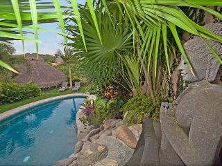 Gorgeous House with Internet Access and Clothes Dryer - Sayulita vacation rentals