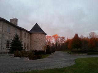 Nice Chateau with Internet Access and Garden - Pelham vacation rentals