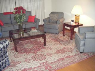 Cuenca Ecuador Furnished Apartment - Cuenca vacation rentals
