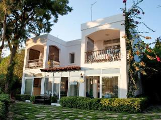 224 - Aktur Aparts 1 With Seaview - Bodrum vacation rentals