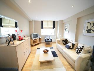 Beautiful Two Bedroom Apartment in Chelsea - London vacation rentals