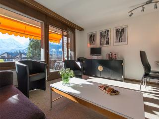 Nice Condo with Internet Access and Satellite Or Cable TV - Wengen vacation rentals