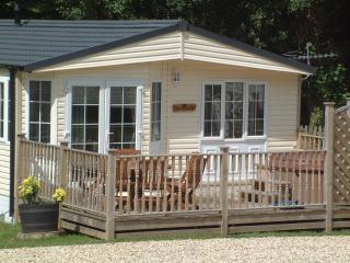 Family Lodge - Ilfracombe vacation rentals