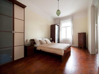 Luxury apartment next to Synagogue - Budapest & Central Danube Region vacation rentals