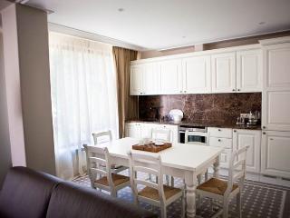 Comfortable 2 bedroom Krasnaya Polyana Resort with Internet Access - Krasnaya Polyana vacation rentals