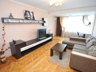 Nice two-room apartment in  center Chisinau - Chisinau vacation rentals