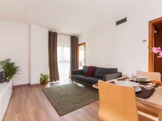 Barcelona, near Sagrada Familia - Barcelona vacation rentals