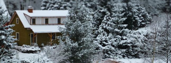Cozy 2 bedroom House in Pirna - Pirna vacation rentals
