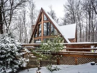 Hideaway Chalet - McHenry vacation rentals