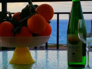 Getaway Villa - Pomos vacation rentals