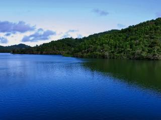 1 bedroom Tree house with Private Fishing in Cayey - Cayey vacation rentals