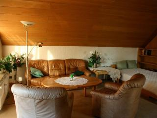 Vacation Apartment in Celle - 1206 sqft, spacious, comfortable (# 2807) - Celle vacation rentals