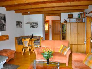 Davos Albertihaus 5A, sonnige, gepflegte, allergikerfreundliche Wohnung - Davos Platz vacation rentals