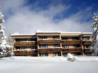 2 bedroom Apartment with Deck in Davos Platz - Davos Platz vacation rentals