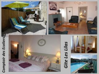 2 bedroom Gite with Internet Access in Gemozac - Gemozac vacation rentals