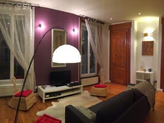 T3 bel ancien de 76 m² sur Lyon Tolstoï + parking - Villeurbanne vacation rentals