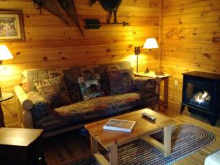 Nut House - Valle Crucis vacation rentals