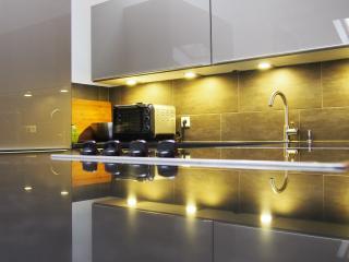 Luxury 3 Room Penthouse Kitzsuite - Kitzbühel vacation rentals