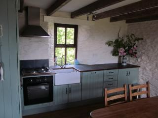 Nice 4 bedroom Farmhouse Barn in Kilcrohane - Kilcrohane vacation rentals