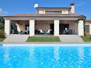 Modern-Luxury Villa with large pool & large garden - Labin vacation rentals