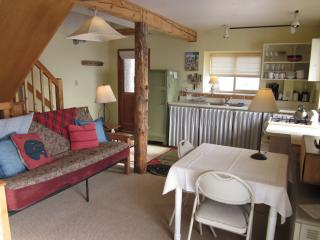 The Beetch House Retreat Cabin - Crestone vacation rentals