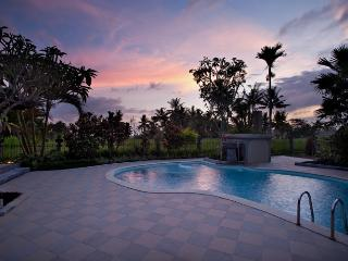 Villa Cemadik,3 bedrooms serenity,private,relaxing - Pejeng vacation rentals