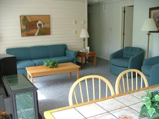 LAST MINUTE DEAL! Stowe Presidents' Week Unit B301 - Stowe vacation rentals