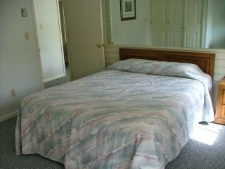 LAST MINUTE DEAL! Stowe Presidents Week, Unit B101 - Stowe vacation rentals