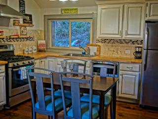 Charming cottage in downtown Nederland - Nederland vacation rentals