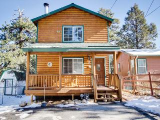 Cozy mountain getaway surrounded by national forest! - Big Bear City vacation rentals