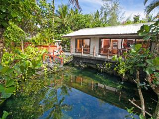 Lagoon Shangrila - Discover the Real Hawaii!! - Pahoa vacation rentals