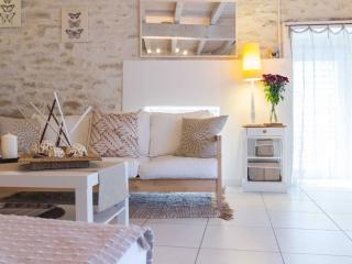 Villa aqueducienne, gîte proche de Dijon - Dijon vacation rentals