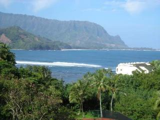 View surfers from your bed--Honeymooner's Delight! - Princeville vacation rentals