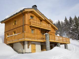 Les Chalets de la Madeleine - Saint Francois Longchamp vacation rentals