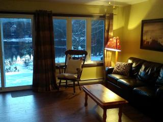 Cozy Chalet with Deck and Satellite Or Cable TV - Lac-des-Plages vacation rentals